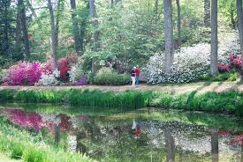 brookside gardens year round beauty in a tranquil setting