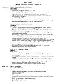 Sample Marketing Campaign Marketing Campaign Analyst Resume Samples Velvet Jobs 1