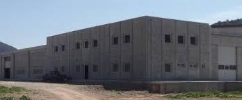 Αποτέλεσμα εικόνας για Εικόνες για εργοστάσιο τυποποίησης ελιάς στην  Άμφισσας