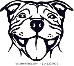 pitbull dog face drawing. Perfect Drawing Pit Bull PitBull Terrier Dog Breed Pet Throughout Pitbull Dog Face Drawing 1