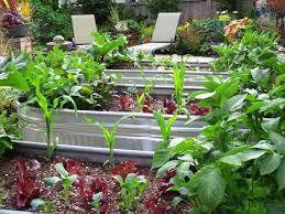 Small Picture 136 best Edible Garden Design images on Pinterest Edible garden