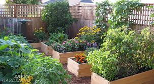 planting a raised bed tips on spacing