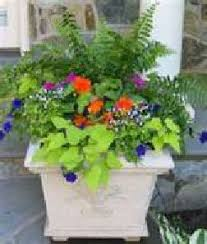Small Picture Container Gardening Design