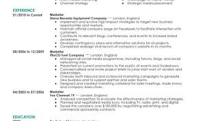 Examples Of Resumes It Resume Format Samples For Cv Naukri
