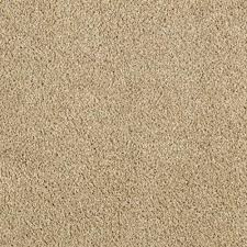 beige carpet texture. lifeproof carpet sample - pagliuca i color shell beige texture 8 in. x e