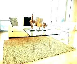 rugs area 4 x 6 decor rug oval sheepskin at target home how big is a