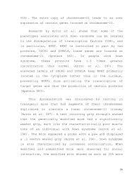 term paper  36