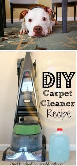 diy carpet cleaner. Tips For Steam Cleaning Carpets + My Favorite DIY Carpet Cleaner Recipe Diy