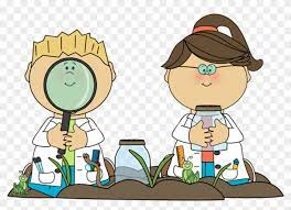 Science Clipart Primary School - Science In Primary School - Free Transparent PNG Clipart Images Download