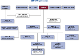 Eeoc Performance And Accountability Highlights Fy 2007