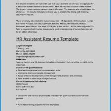 Resume Template With Objective Ceo Resume Sample Doc Valid Building A Awesome Resume Examples