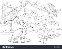 Small Picture Zoo African Animals Small Set African Stock Illustration 386678443