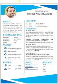 Mkalhoro I Will Be Your Professional Resume Cv Maker For 5 On Www Fiverr Com