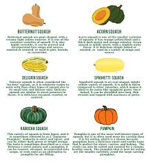 here are some recipes featuring a variety of winter squash to get you started