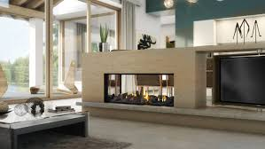 escea ds1150 double sided gas fireplace