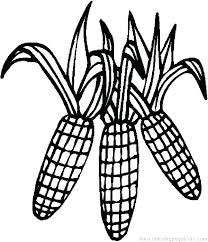 Thanksgiving Indian Corn Coloring Pages Thanksgiving Corn Coloring