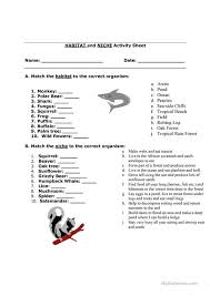 habitat and niche activity sheet answers habitat and niche worksheet free esl printable worksheets made by