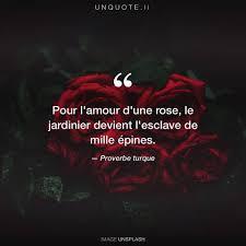 Citation Amour Rose Infos Et Ressources
