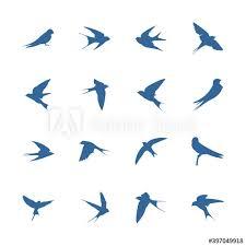set of swallow logo vector template