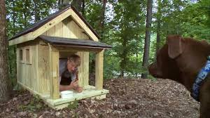 Pete Nelson Builds the Ultimate Dog House   Treehouse Masters    Pete Nelson Builds the Ultimate Dog House   Treehouse Masters   YouTube