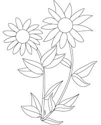 This sunflower is a free image for you to print out. Coloring Pages Of Sunflowers Coloring Home