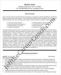 chief financial officer resumes 20 finance resume templates pdf doc free premium templates