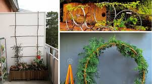 featured image the best diy garden trellis ideas