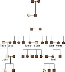 Examples Of Family Pedigree Charts Genetics Unit