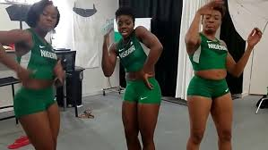 Image result for team nigeria at winter olympics
