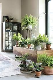 Planten Woonkamer Pinterest Huisdecoratie Ideeën