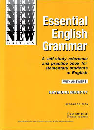 is there any good site for improving and practicing english  essential english grammar is a reference and practice book for a beginner in the english language the book contains grammar points examples and