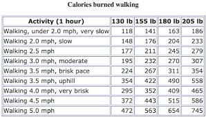 Calories Burned Walking Chart Cant Lose Weight Heres Why