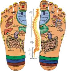 Acupressure Chart My Own Thoughts Acupressure Reflexology Charts Collection