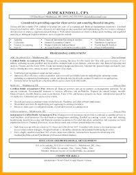 Payroll Auditor Sample Resume Ha