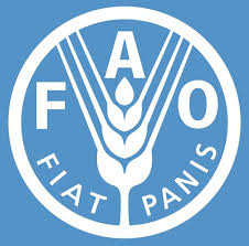 Acquaculture Specialist at Food and Agriculture Organization of the United Nations (FAO)