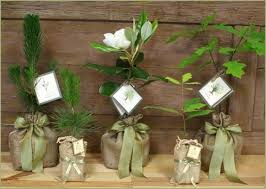 memorial gift trees