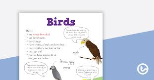 Bird Taxonomy Chart Animal Classification Poster Birds Teaching Resource