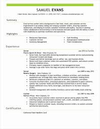 Inspirational Collection Of Resume Summary Examples For Customer Job