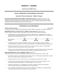 Agreeable Marketing Executive Resume Objective With Additional