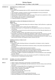 Social Consultant Resume Samples | Velvet Jobs