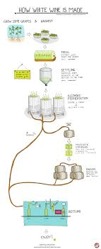 How Is White Wine Made Wine Folly