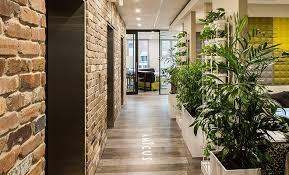 sydney office. Sydney Office - Amicus Interiors