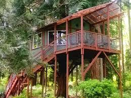 swiss family robinson house plans luxury treehouses where you can stay