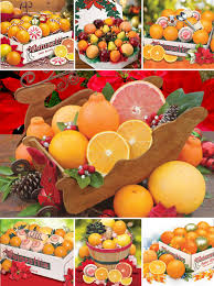 there is still time to give the perfect gift florida navels and gfruit are sweeter