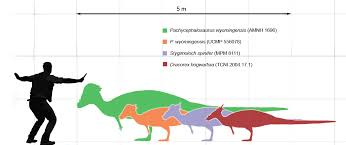 Velociraptor Size Chart Updating All Dinosaur Comparison Charts With Jurassic