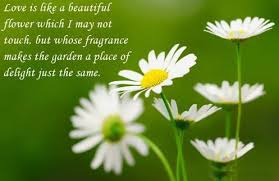 Beautiful Flower Quotes And Sayings Best Of Quotations About Flowers Nice Quotes Quotes About Life