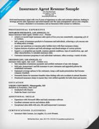 Sample Cover Letter For Resume Insurance Agent Cover Letter Sample Resume Companion 60