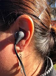The Best Wireless Headphones And Earbuds Of 2019 Treeline