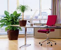 feng shui plants for office. Stunning-feng-shui-workplace-design-with-red-swivel- Feng Shui Plants For Office