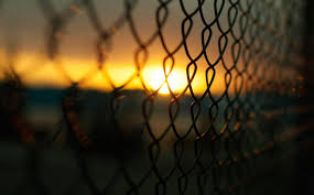 chain link fence wallpaper. Residential Chain Link Fence Wallpaper